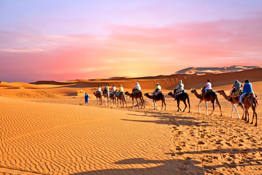 Sahara camel caravan 1631894114.pn