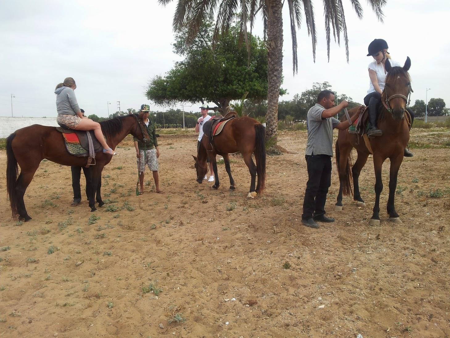Balades-cheval-Agadir-1506965505-1559214767