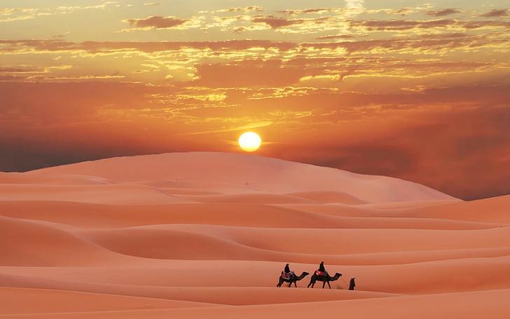 Camel-ride-2-1632176093
