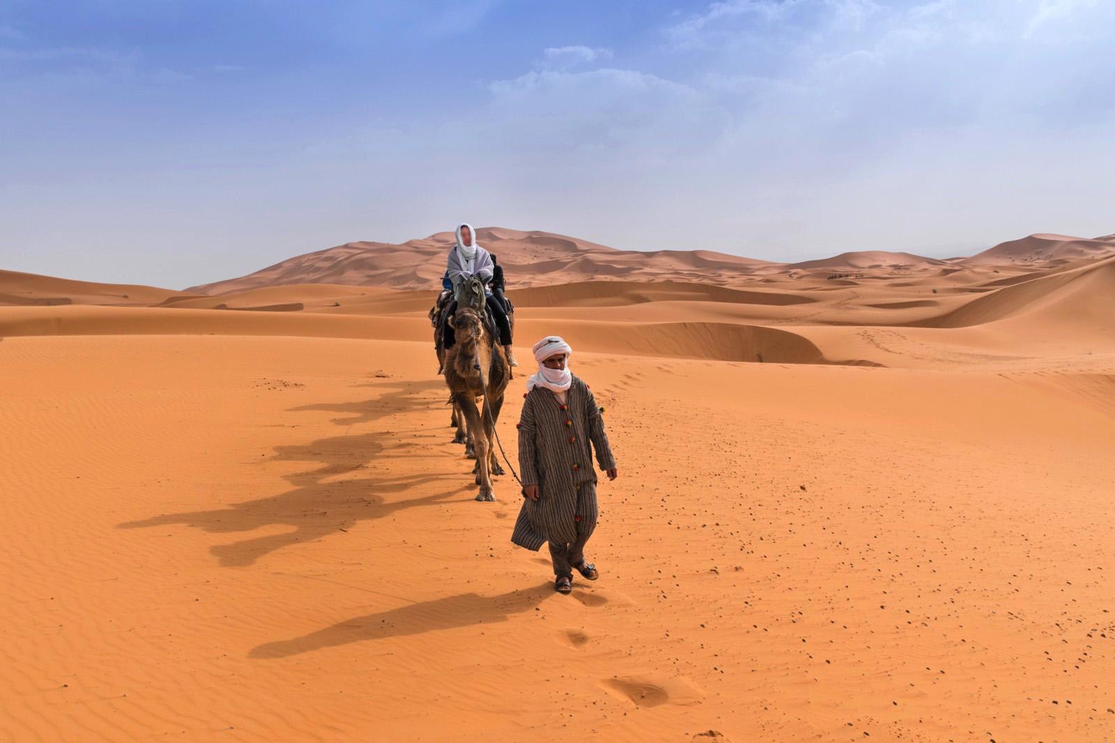 dromadaire-desert-au-maroc-1559038844